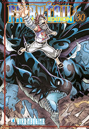 Fairy Tail New Edition 30